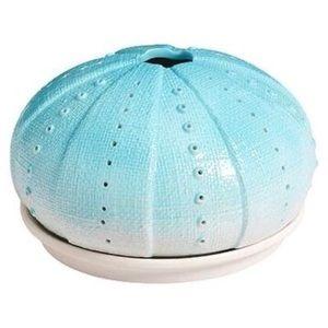 Ceramic sea urchin jewelry organizer and dish